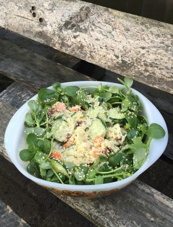 Frisse salade van koolrabi en zomerpostelein