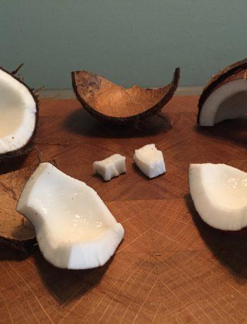 hoe maak je ene kokosnoot open, kokosnoot openen, kokosnoot, gezond, instructie, openmaken, vers