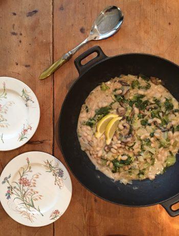 witte bonen met andijvie, witte bonen, andijvie, groenten, biologisch. gezond, makkelijk, recept