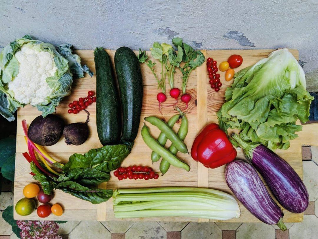 De seizoensgroenten van juli met bijpassende recepten. Veelal vegetarisch en sommige ook veganistisch. Zowel hoofdgerechten, als bijgerechten, soepen, salades en taarten. Voor elke gelegenheid en elk moment.