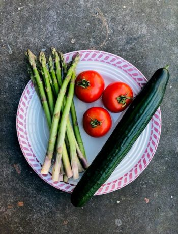 De seizoensgroenten van april met bijpassende recepten. Veelal vegetarisch en sommige ook veganistisch. Zowel hoofdgerechten, als bijgerechten, soepen, salades en taarten. Voor elke gelegenheid en elk moment.