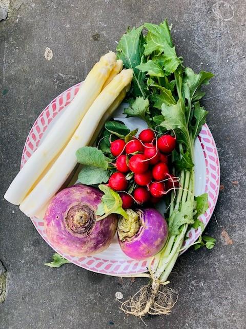 De seizoensgroenten van mei met bijpassende recepten. Veelal vegetarisch en sommige ook veganistisch. Zowel hoofdgerechten, als bijgerechten, soepen, salades en taarten. Voor elke gelegenheid en elk moment.