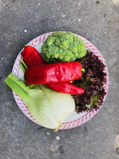 De seizoensgroenten van juni met bijpassende recepten. Veelal vegetarisch en sommige ook veganistisch. Zowel hoofdgerechten, als bijgerechten, soepen, salades en taarten. Voor elke gelegenheid en elk moment.